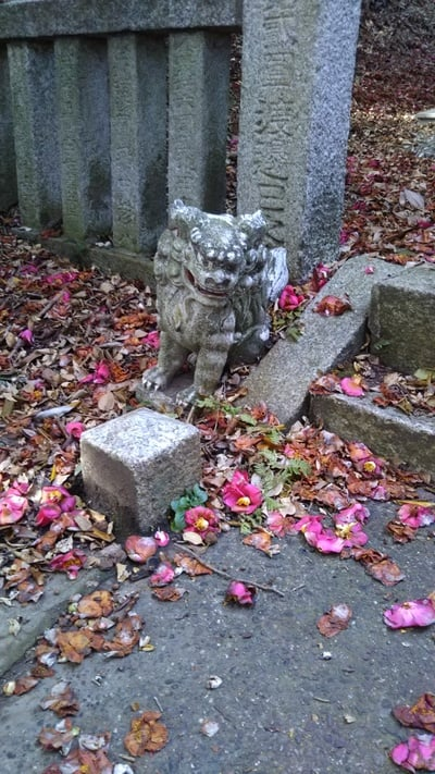 茨城県釜坂八幡神社の写真