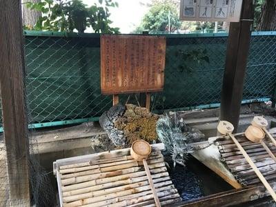 諏訪神社(東京都西早稲田駅) - 未分類の写真