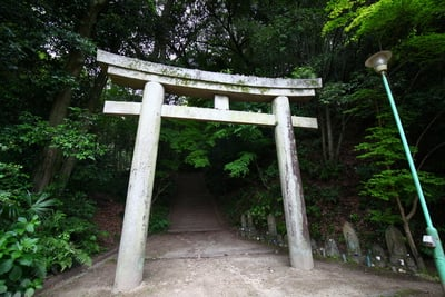 広島県明王院の鳥居