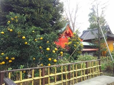 二ツ宮氷川神社の近くの神社お寺|足立神社