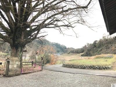 千葉県寺院(名称不明)の庭園
