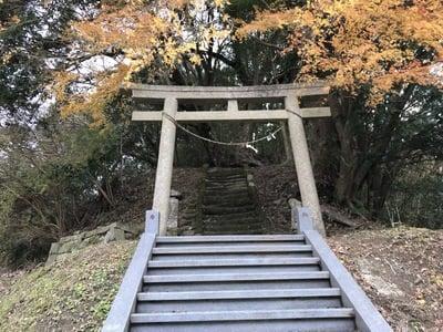 千葉県日吉神社の鳥居
