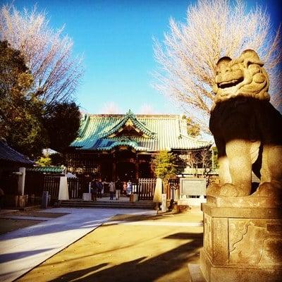 牛嶋神社(東京都本所吾妻橋駅) - 狛犬の写真