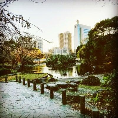 牛嶋神社(東京都本所吾妻橋駅) - 庭園の写真