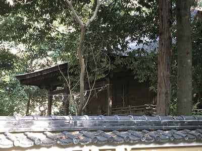 神谷神社の本殿