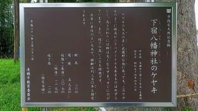 東京都下宿八幡神社の写真