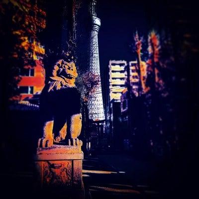 東京都牛嶋神社の狛犬