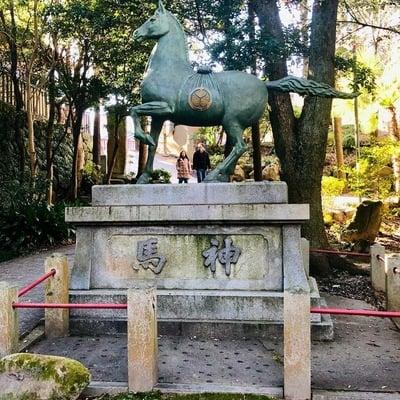 六所神社(愛知県東岡崎駅) - 狛犬の写真