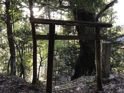 千葉県怒田神社の写真