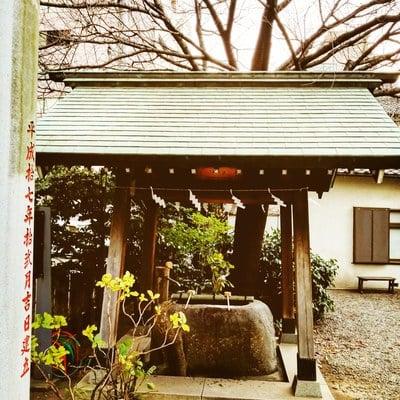 蔵前神社の手水