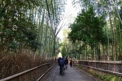 野宮神社(京都府)