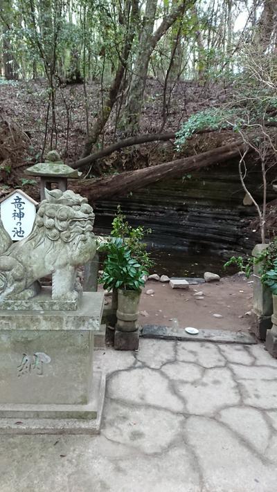大分県水分神社の写真