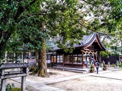 愛知県白山社(寺切白山社)の本殿