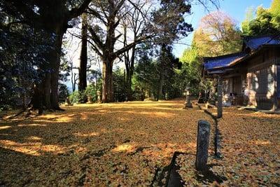 大石見神社の建物その他