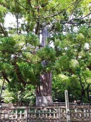 岩手県日高神社の写真