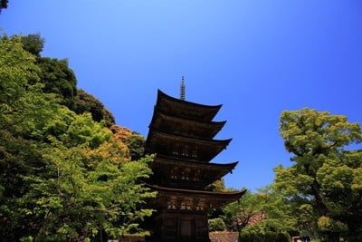 瑠璃光寺(山口県上山口駅) - 塔の写真
