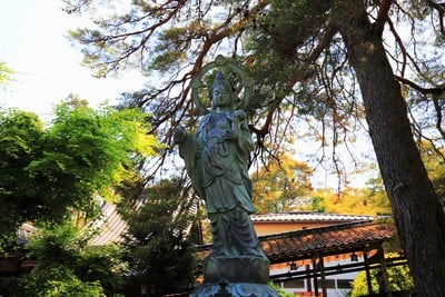 瑠璃光寺(山口県上山口駅) - 仏像の写真