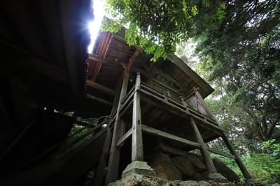 多陀寺(島根県下府駅) - 本殿・本堂の写真