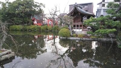 神泉苑(京都府二条城前駅) - 庭園の写真