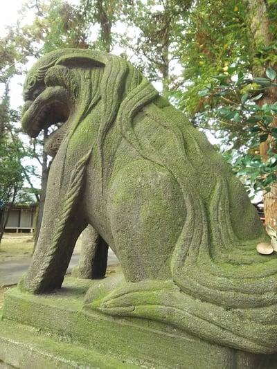 二ツ宮氷川神社の狛犬
