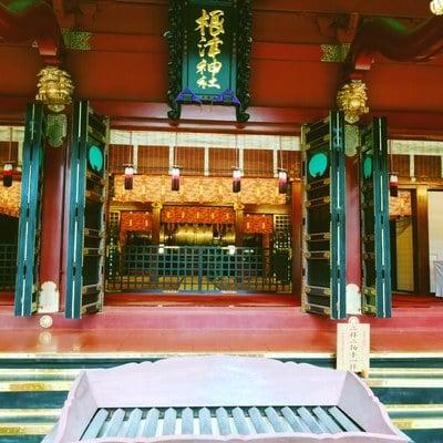 東京都根津神社の本殿