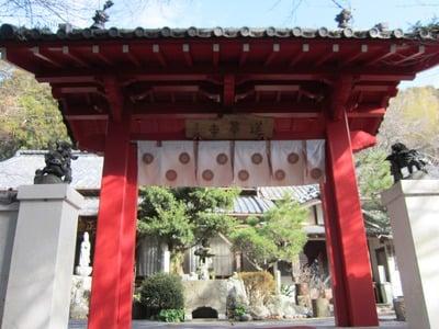 蓮華寺萩の寺の山門
