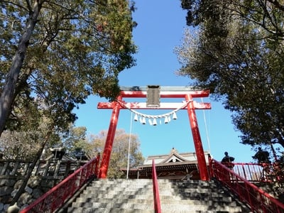 愛知県五社稲荷社の鳥居