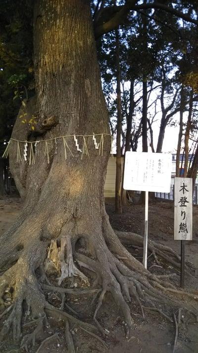 静神社の自然