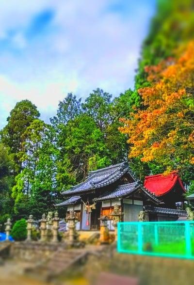 北野天神社の近くの神社お寺|赤坂神社