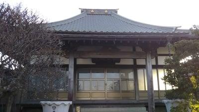 光円寺の近くの神社お寺|林光寺