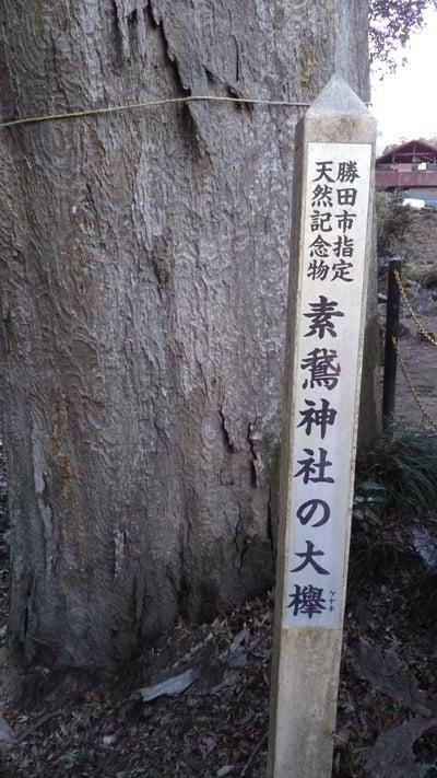 素鵞神社の自然