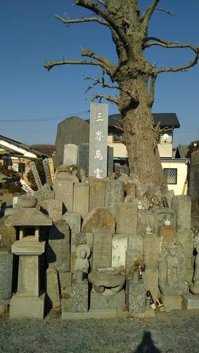 光明寺(茨城県)