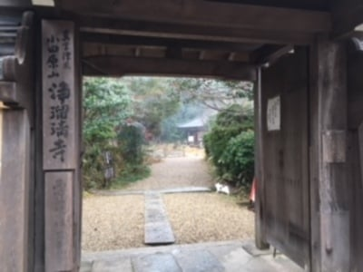 京都府浄瑠璃寺の山門