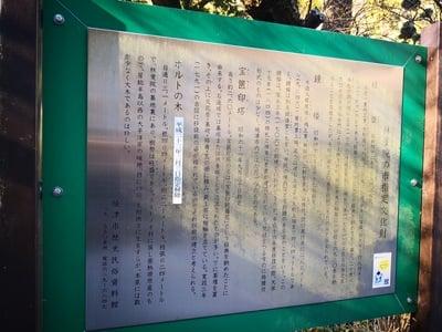 静岡県林叟院の写真