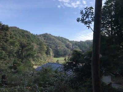 千葉県山神神社の写真