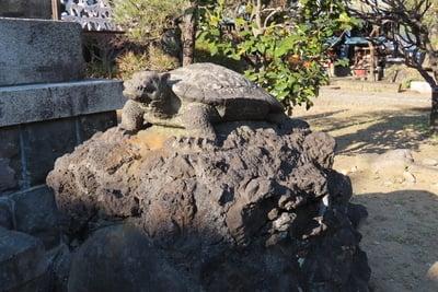 隅田川神社の狛犬
