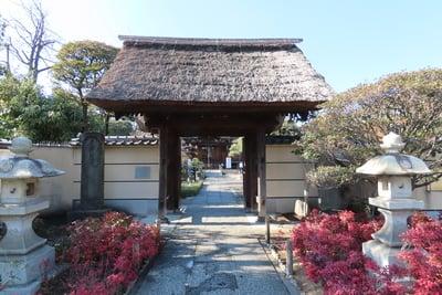 東京都多聞寺の山門