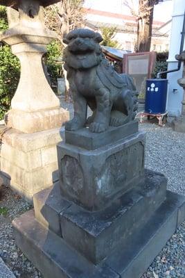 白鬚神社(東京都東向島駅) - 狛犬の写真