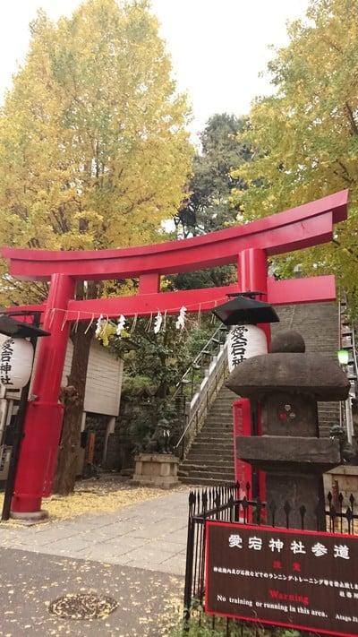 東京都愛宕神社の鳥居