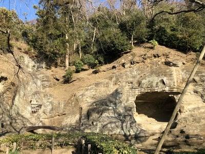 瑞泉寺の自然