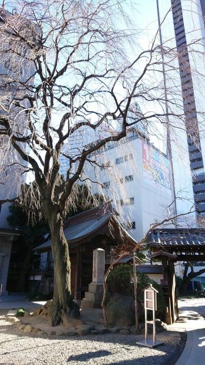 常圓寺の建物その他