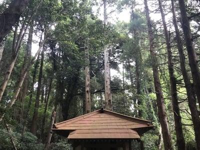 千葉県神社(名称不明)の写真