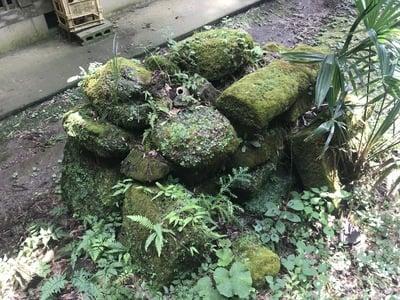 千葉県天照神社の建物その他
