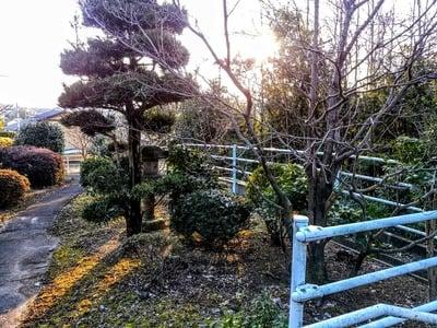 天根山 長泉寺の庭園