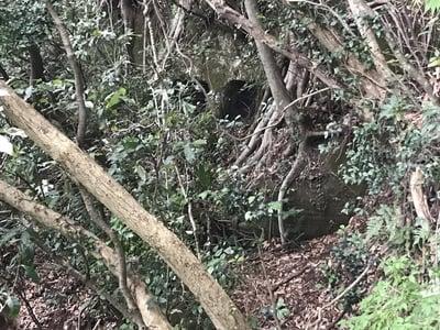 千葉県岩見堂やぐらの写真
