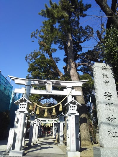 芳川神社の鳥居