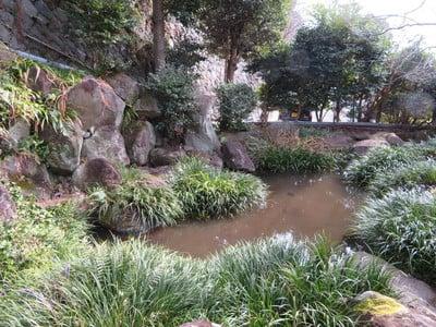 身代り不動尊(大明王院)(静岡県熱海駅) - 庭園の写真