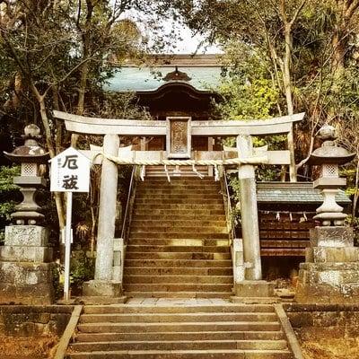 篠崎浅間神社(東京都篠崎駅) - 鳥居の写真