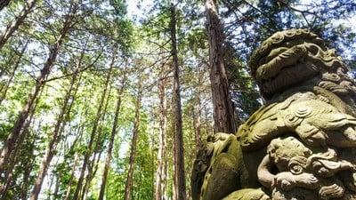 神明神社(埼玉県)