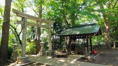 埼玉県安松神社の鳥居